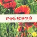 Album Robert Křesťan a Druhá tráva - Best & Last