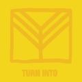 Album Turn Into