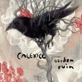 Album Garden Ruin