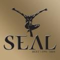 Album The Best Of Seal 1991-2004
