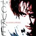 Album Bloodflowers