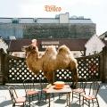 Album Wilco (The Album)
