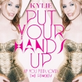 Album Put Your Hands Up (If You Feel Love) [The Remixes]