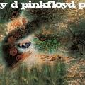 Album A Saucerful Of Secrets (2011 Remastered Version)