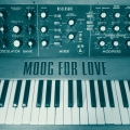 Album Moog For Love