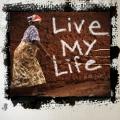 Album Live My Life