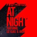 Album At Night (feat. Liz Elias and Akon)