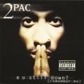 Album R U Still Down (Remember Me)