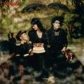 Album The Adventures Of Ghosthorse And Stillborn