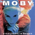 Album Everything Is Wrong