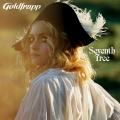 Album Seventh Tree