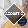 Album Acoustic: The Collection