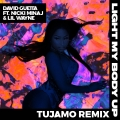 Album Light My Body Up (feat. Nicki Minaj & Lil Wayne) [Tujamo Remix]