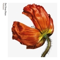 Album Release: Further Listening 2001 - 2004 (2017 Remastered Version)