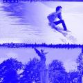 Album Les oxalis (Alan Braxe Remix)