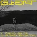 Album Giant - Single