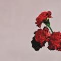 Album Love In The Future|en