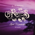Album In the Shadows (Lost Frequencies Remake) - Single
