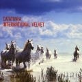 Album International Velvet