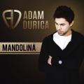 Album Mandolína