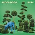 Album Bush