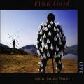 Album Delicate Sound Of Thunder