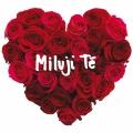 Album Miluji Te