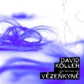 Album Vězenkyně - Single