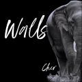 Album Walls