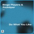 Album Do What You Like