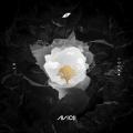 Album AVĪCI (01)