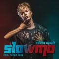 Album Slowmo