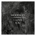 Album I Love You